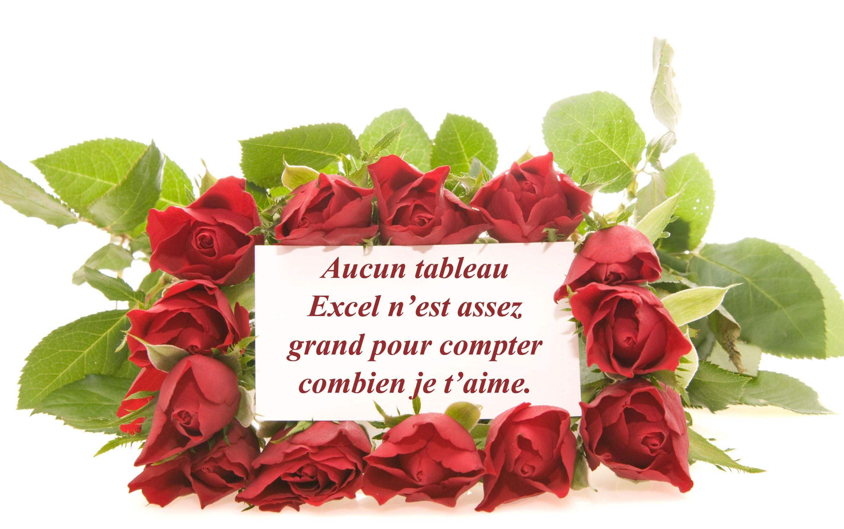 tableau-excel-bouquet