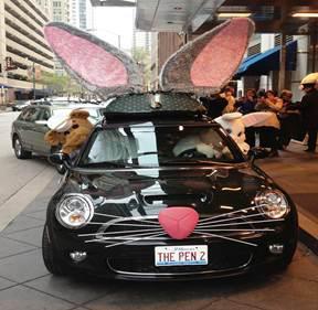 voiture-lapin